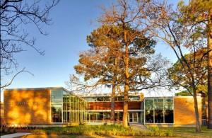 Oak Forest Neighborhood Library